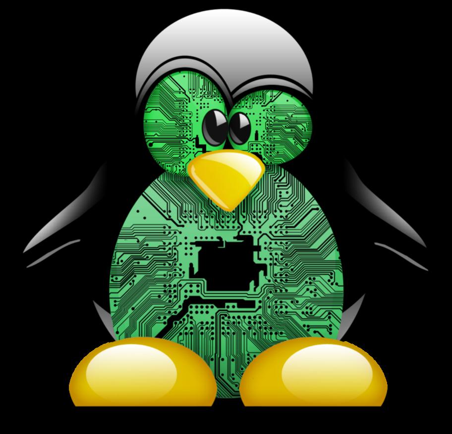 kernel-compile-penguin.png, août 2020